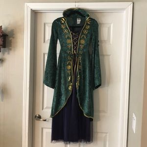 Disney Hocus Pocus Costume Winifred Halloween L